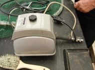 Koi-Teich-Filteranlage-13